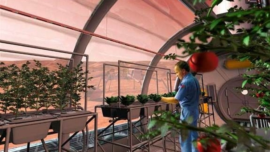 Future astronauts may grow some of their meals inside greenhouses, such as this Martian growth chamber, where fruits and vegetables could be grown hydroponically, without soil.