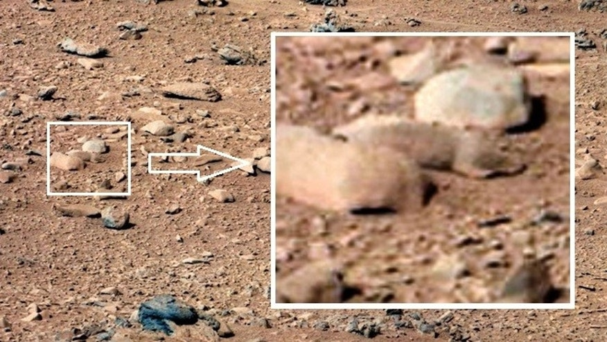'Mars rat' spied by NASA's Curiosity rover | Fox News