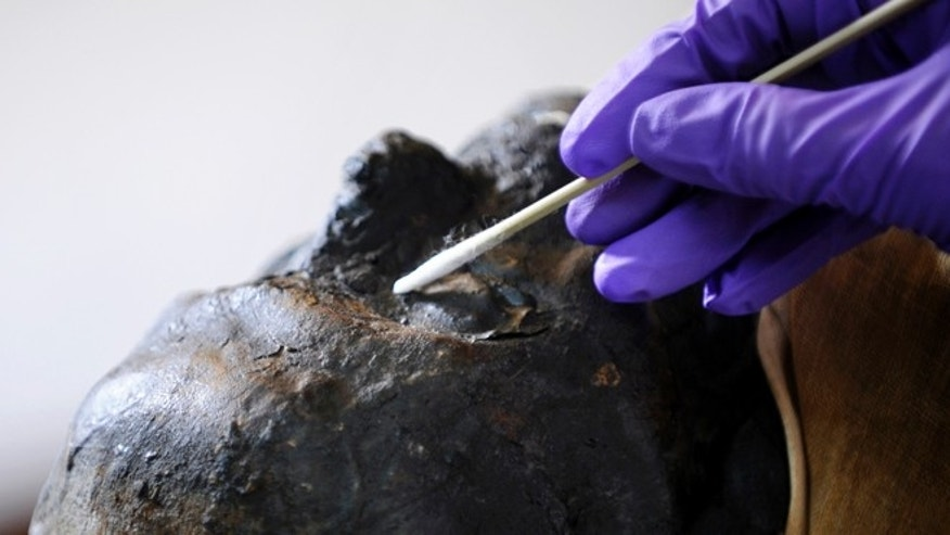June 7, 2013: Mimi Leveque, a freelance conservator, cleans Padihershef, a 2,500-year-old Egyptian mummy at Mass General Hospital in Boston. Padihershef, who has made MGH his home since 1823, was a 40-year old stonecutter in the necropolis in Thebes, an ancient city on the west bank of the Nile.