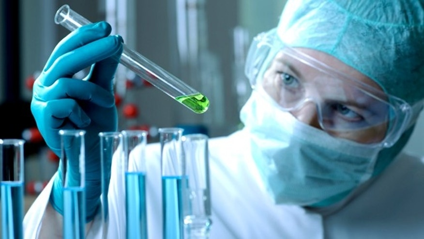Stupid science: 4 dumb experiments done by scientists | Fox News