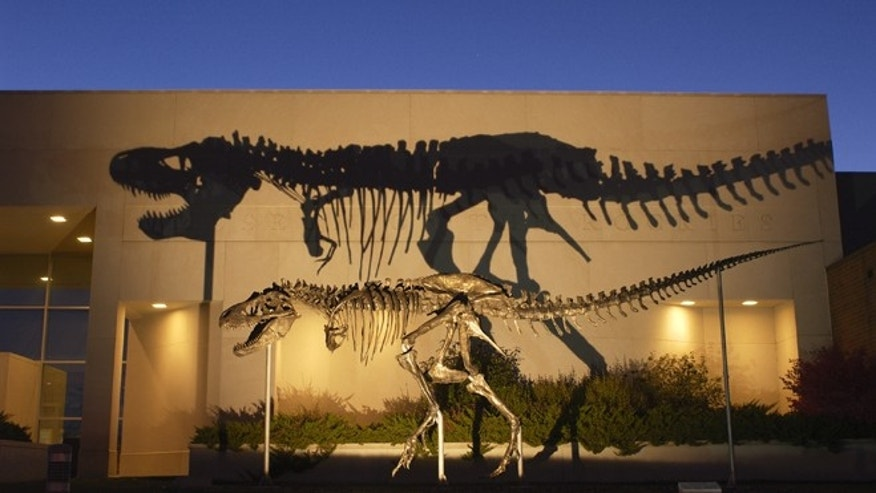 A bronze cast of the Tyrannosaurus rex skeleton known as the Wankel T.rex, in front of the Museum of the Rockies at Montana State University in Bozeman, Mont.