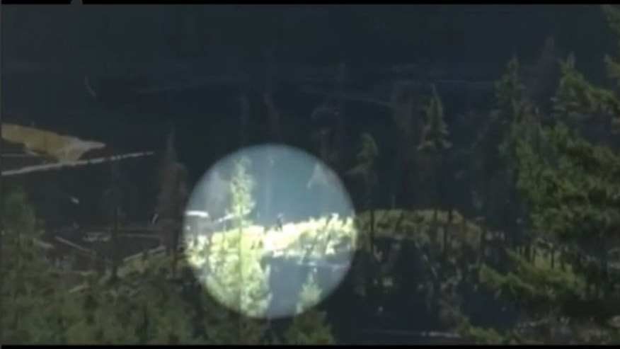 A video of a figure, which appears covered in thick black hair and is seen lumbering across the mountain top, has sparked plenty of excitement among Bigfoot fans.