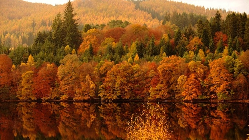 Autumn leaves are reflected in Loch Faskally in Pitlochry, Perthshire, Scotland.