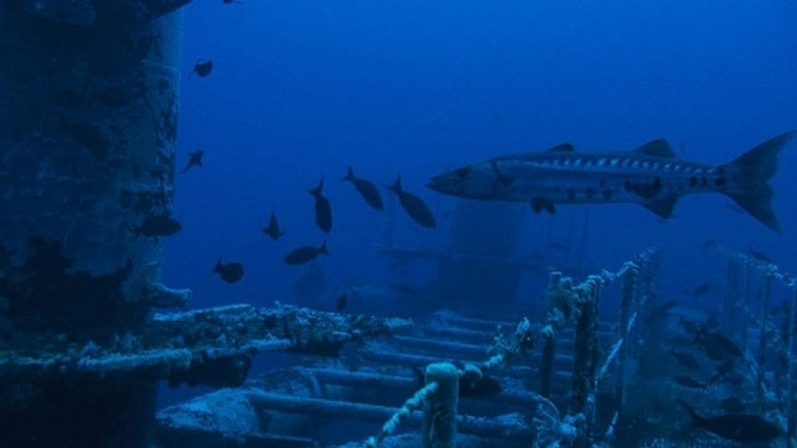 Scientists say the oil rigs, whether in operation or scuttled, help form artificial reefs that boost fish populations. (All photos courtesy Meridian Ocean Services)