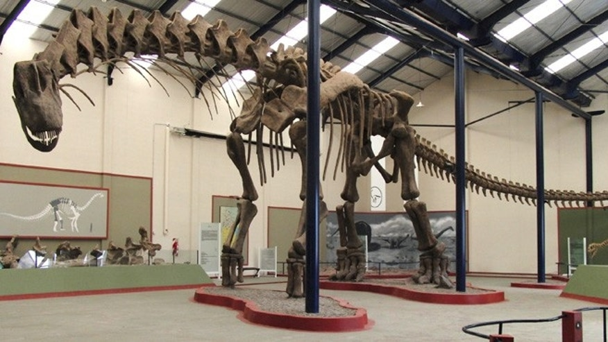 This is the 40-meter original skeleton, Argentinosaurus huinculensis reconstruction at Museo Municipal Carmen Funes, Plaza Huincul, Neuquén, Argentina.