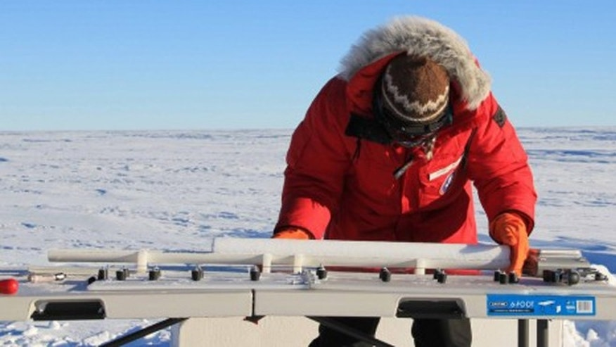 A researcher from the University of Copenhagen examines an ice core from the West Antarctic Ice Sheet.