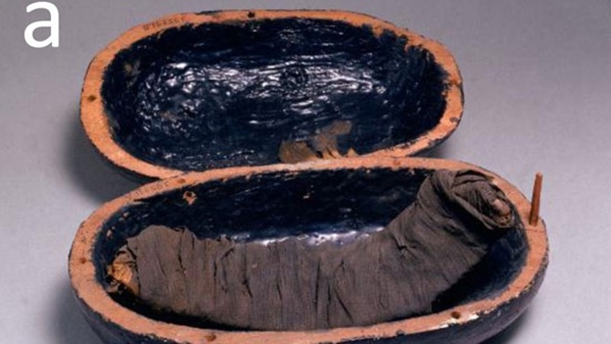 Beef rib meat mummy from the tomb of Yuya and Tjuiu (1386-1349 BC).