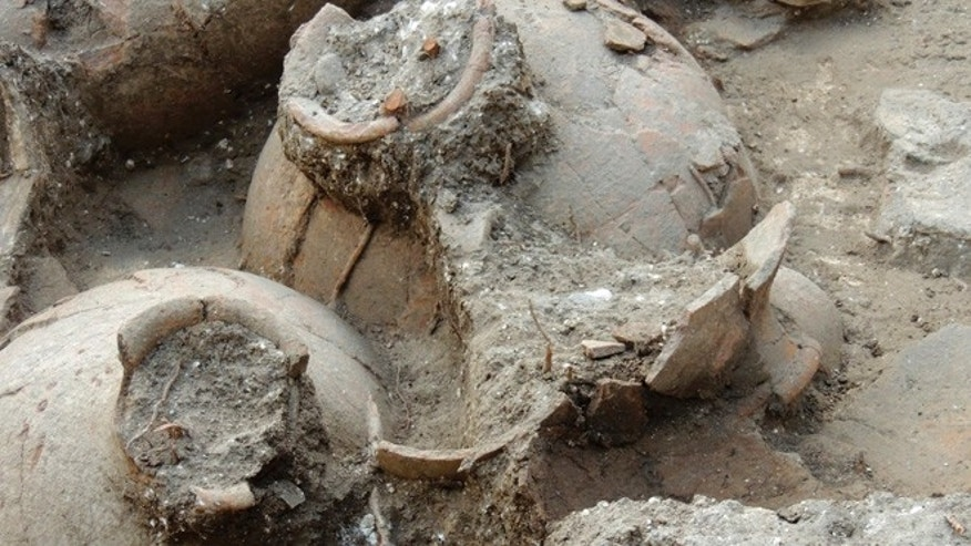 3,700-year-old jars were found in the ruins of a recently discovered wine cellar in a Canaanite palace that dates back to approximately 1700 B.C., near the modern town of Nahariya in northern Israel.