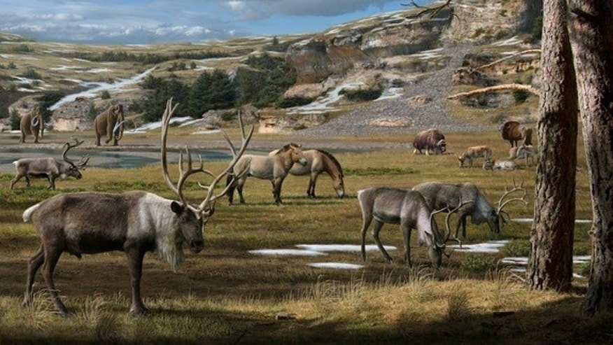 The Arctic had much more diverse flora than previously thought during the Pleistocene Era