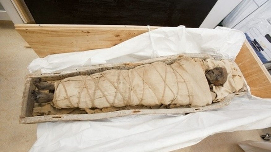 This 1,700-year-old mummy has a brain, no heart and plaques over her sternum and abdomen, say researchers. Here, the mummy is being unboxed on the first day of a scanning session at the Montreal Neurological Institute.