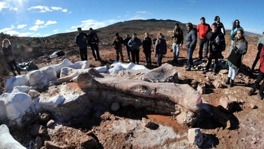 May 16, 2014: Residents and technicians look at the bones of a dinosaur at a farm in La Flecha, west of Argentina's Patagonian city of Trelew. REUTERS/Daniel Feldman