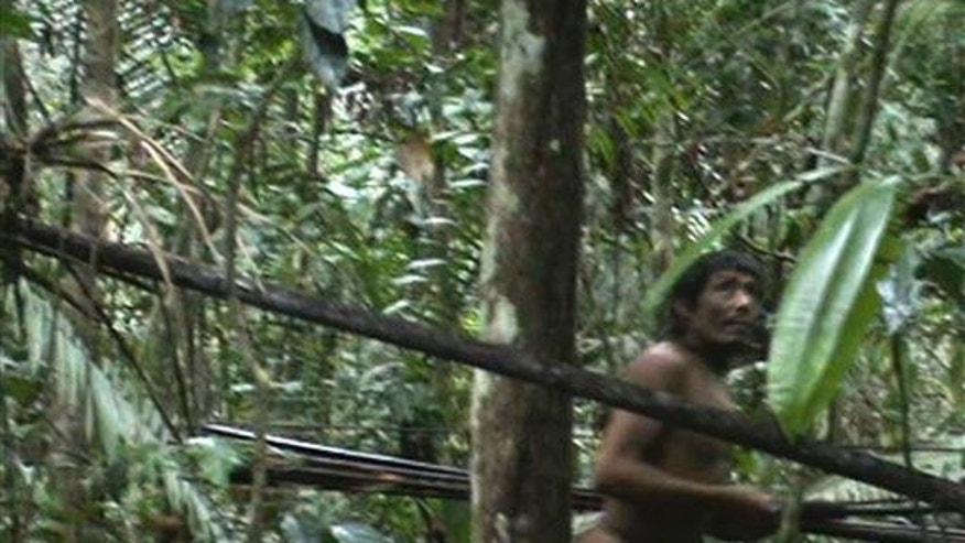 In this frame grab taken from video shot in 2011 by Brazil's National Indian Foundation (FUNAI) a member of another tribe, the Kawahiva, carries arrows in the Amazon jungle in Brazil.