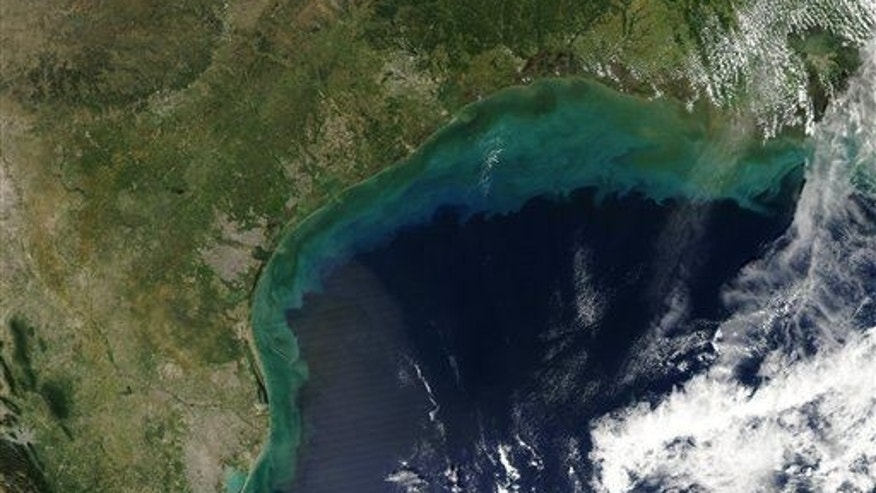 "This image provided by NASA shows sediments in the Gulf of Mexico taken by the Aqua satellite in Sept. 2002. The director of Global Water Watch hopes a new project that enlists middle and high school students will help reduce the farm runoff that is a growing pollution threat to the Gulf of Mexico. Nitrogen and phosphorus pollutants from the farms end up on a huge scale in the Gulf, where an 8,000-square-mile ""dead zone"" forms annually off the Louisiana and Texas coasts as one result."
