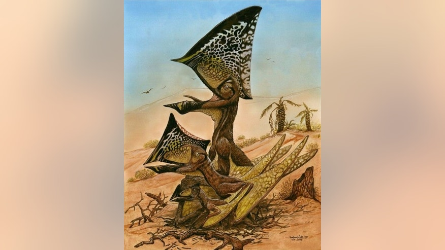 A new species of flying reptile from the Cretaceous Era, <i>Caiuajara dobruskii</i>i, has been unearthed in southern Brazil. The creature, described in a 2014 PLOS ONE paper, sported a bony crest on its head.