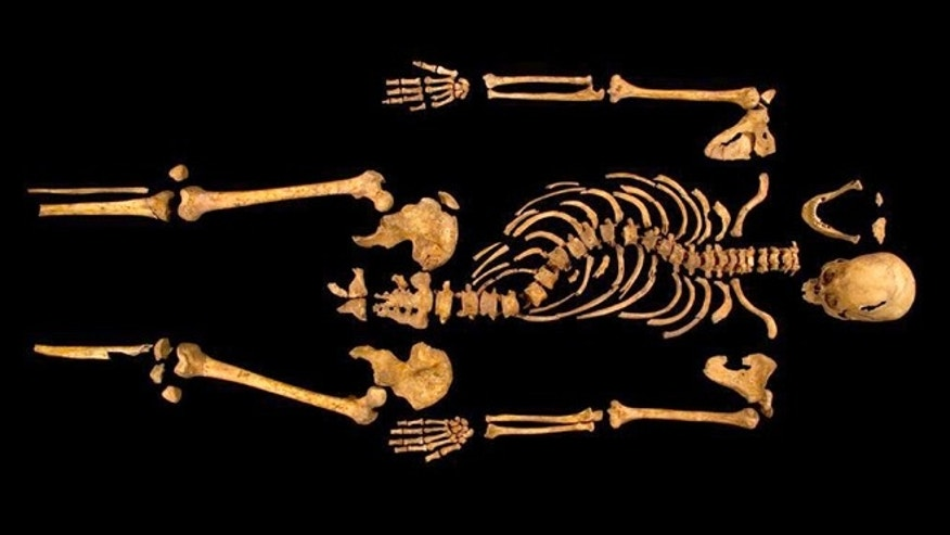 Feb. 4 2013: The curved spine and other long lost remains of England's King Richard III, missing for 500 years. Richard was immortalized in a play by Shakespeare as a hunchbacked usurper who left a trail of bodies  including those of his two young nephews, murdered in the Tower of London  on his way to the throne.