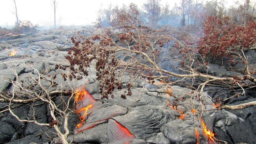 This Monday, Sept. 15, 2014, photo provided by the U.S. Geological Survey shows a close view of the surface activity from the June 27th flow from the Kilauea volcano in Pahoa, Hawaii. On Tuesday, Sept. 16, 2014, Hawaii County spokesman Kevin Dayton said the slow-moving lava is expected to bypass homes in the Kaohe Homesteads subdivision, and the lava is about 19 days from reaching Pahoa Village Road. (AP Photo/U.S. Geological Survey)