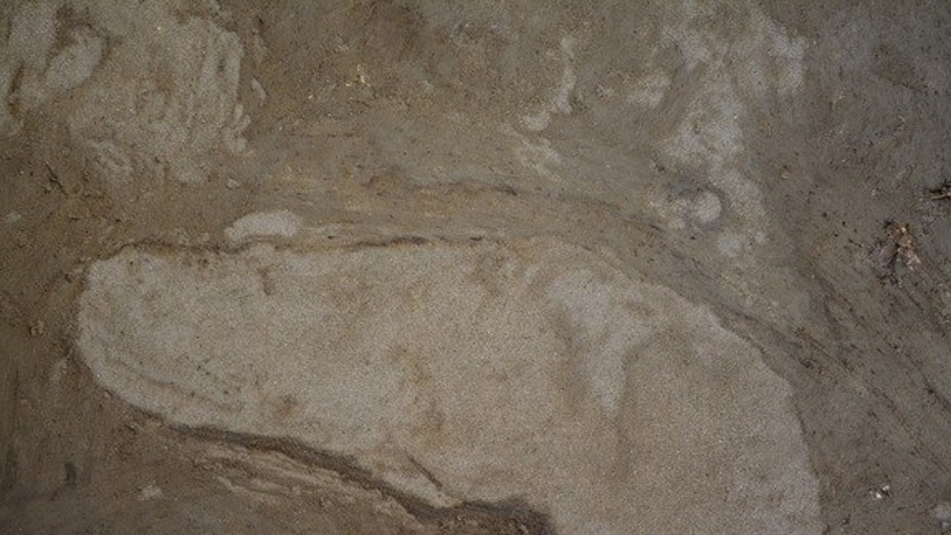 A 5,000-year-old human footprint discovered on the Danish island of Lolland.