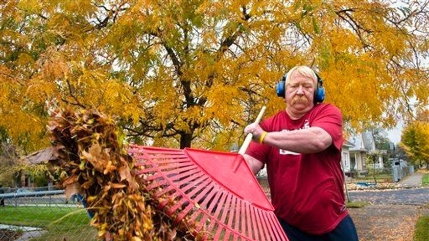 Kick back. Relax. Don't rake leaves.
