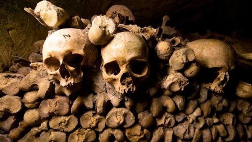 In this photo taken Tuesday, Oct. 14, 2014, skulls and bones are stacked in the Catacombs of Paris, France. A Roman site in the country's southwest revealed five skeletons in shackles.