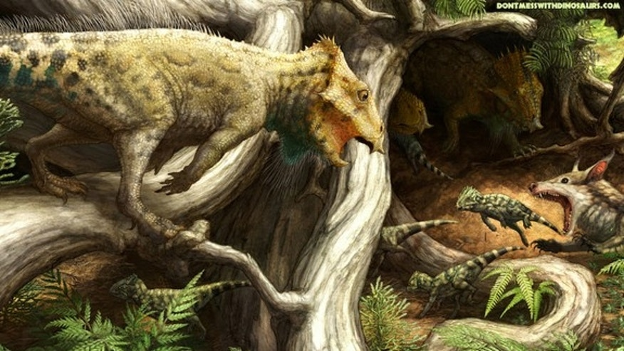 An artist's interpretation of Aquilops americanus with its young in Montana during the Early Cretaceous period, about 107 million years ago.