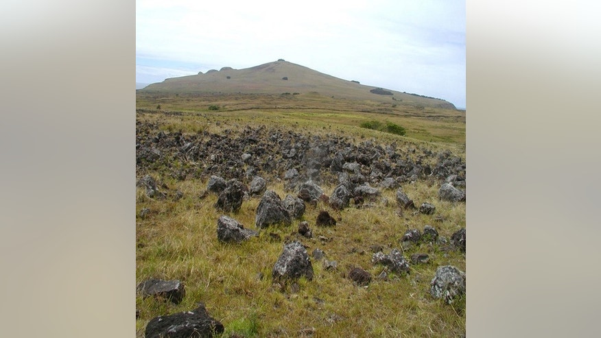 A Rapa Nui Rock Garden, or agricultural field, with Poike volcano in the background.