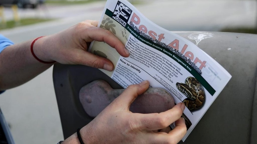 A biologist with the Florida Fish and Wildlife Conservation Commission places a flyer onto a mailbox to alert residents of the neighborhood that the Northern African python has been spotted nearby, Thursday, Jan. 29, 2015, in Miami. For the last five years, wildlife authorities from multiple agencies have raced to keep the northern African python, also known as the rock python, from spreading beyond a small colony in western Miami-Dade County. (AP Photo/Lynne Sladky)