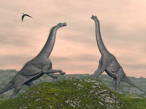 Dinos got high, oldest grass fungus fossil hints