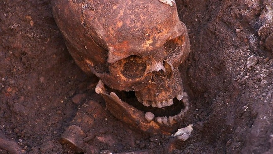 "Feb. 4 2013: Remains found underneath a parking lot last September at the Grey Friars excavation in Leicester, which have been declared ""beyond reasonable doubt"" to be the long lost remains of England's King Richard III, missing for 500 years."