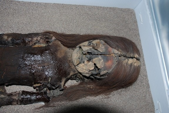 Ancient Chilean mummies now turning into black ooze: Here's why