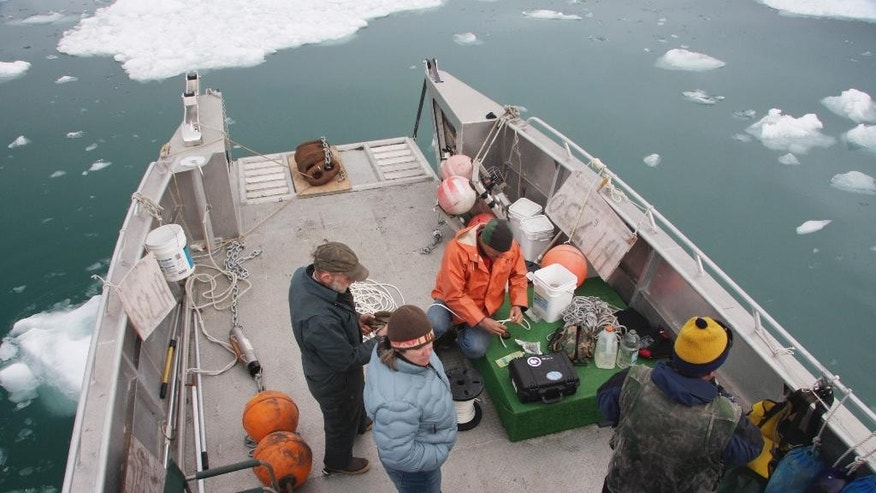 In this May 14, 2009 photo provided by the University of Alaska Fairbanks, a research crew and a boat crewman prepare to deploy a hydrophone to record underwater sound in Icy Bay, Alaska. Glaciologist Erin Pettit began a research project to find out what calving glacier ice sounded like to a humpback whale. The sound of the ice in the water turned out to be more interesting. Acoustic research in Alaska's Icy Bay and other glacier ice-filled waters found that the fizz created by the release of air bubbles under high pressure makes fjords with glacier icebergs the noisiest places in the ocean. (AP Photo/University of Alaska Fairbanks, Erin Pettit)