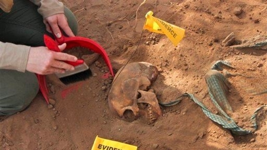 A skull is discovered in a mass grave.