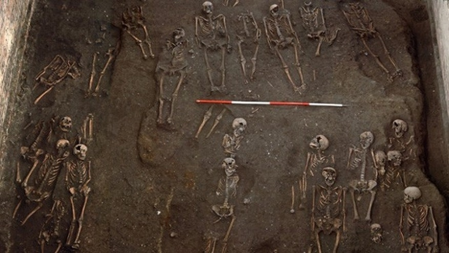 This photo shows some of the skeletons unearthed during the excavation of a medieval cemetery at St. John's College, University of Cambridge in England. (St. John's College, University of Cambridge/Press Association)