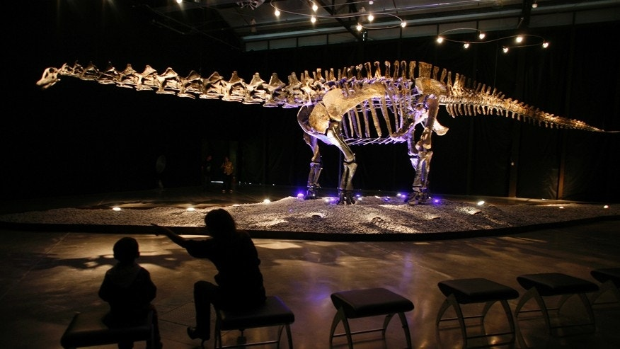 "File photo - visitors look at the skeleton of an Apatosaurus named ""Einstein"" displayed at the Lewis hall in Fundidora park in Monterrey, northern Mexico, Sept. 23, 2009."