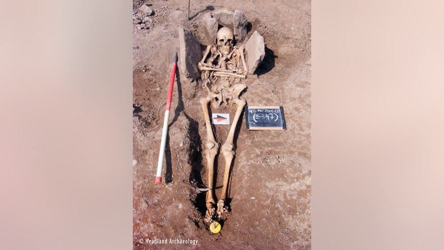 The skeleton of the medieval man, a possible knight, in his stone grave.