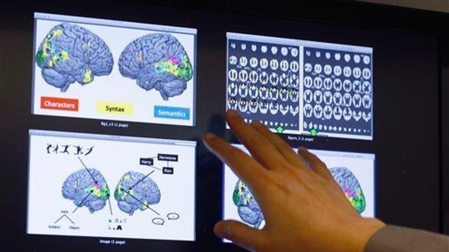 Leila Wehbe, a Ph.D. student at Carnegie Mellon University in Pittsburgh, displays images that used brain scans made from volunteers in a recent experiment while in her office on Nov. 26, 2014.