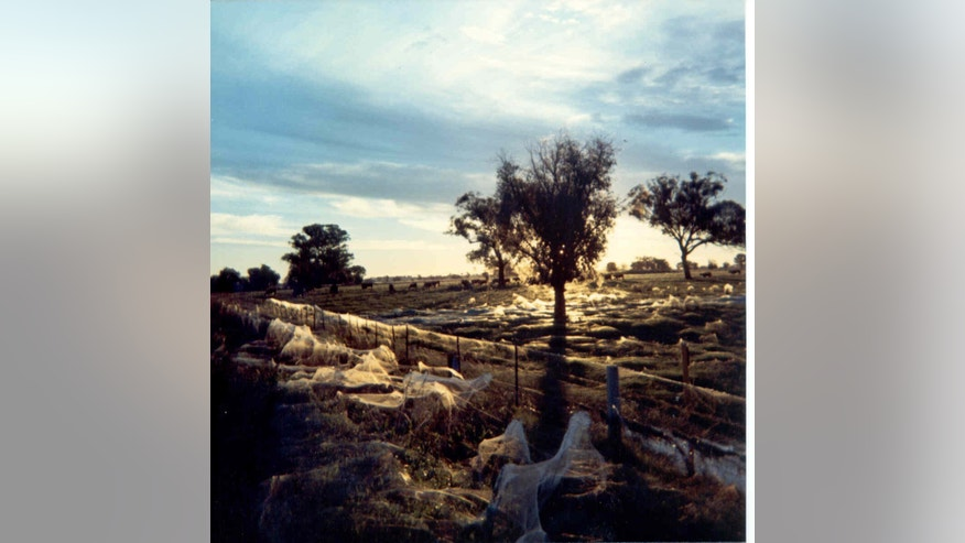 The photograph was taken by Kevin Dixon, sent to Keith Basterfield. It was taken in May 1974 in Albury, New South Wales, Australia.