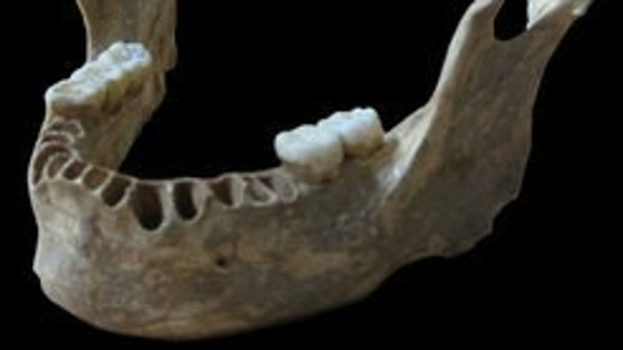 DNA taken from a 40,000-year-old modern human jawbone reveals that this man had a Neanderthal ancestor as recently as four to six generations back.