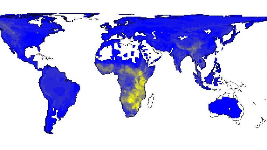 This map depicts the diversity of large mammals globally today.