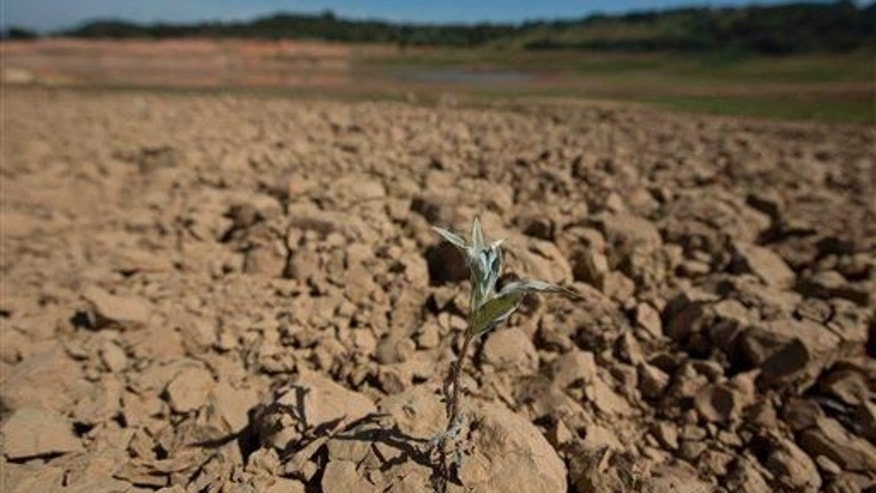 In this May 14, 2014 photo, a lone plant has sprouted through a piece of parched, cracked earth in the Jaguari dam, which is part of the Cantareira System, responsible for providing water to the Sao Paulo metropolitan area, in Braganca Paulista, Brazil. The worst drought in more than 80 years is hitting Sao Paulo, Brazil's largest city just as it prepares for the tens of thousands of foreigners expected at the tournament opener. (AP Photo/Andre Penner)