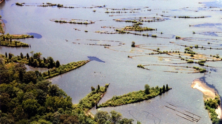 Aerial shot of wrecks in Mallows Bay (Photograph by Donald G. Shomette)