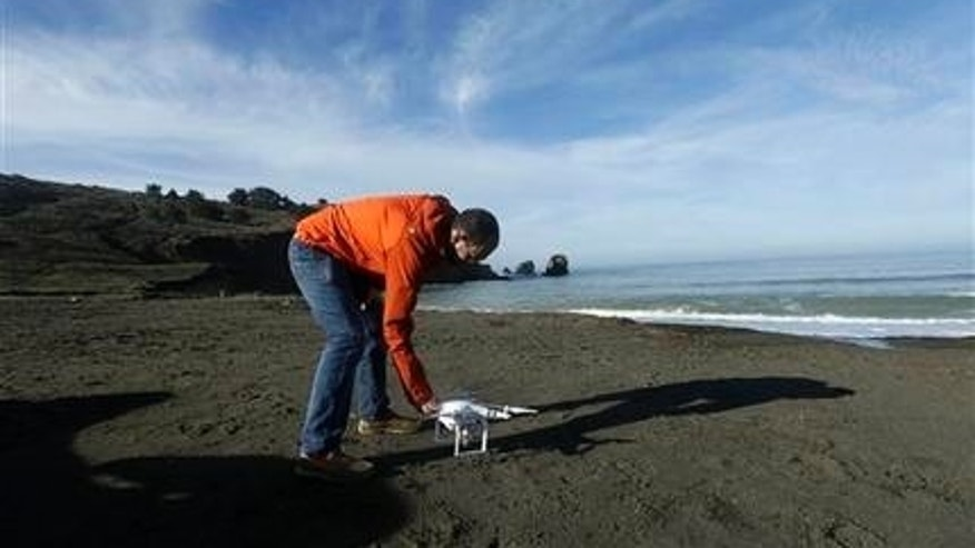 In this Thursday, Jan. 21, 2016 photo, Trent Lukaczyk, an unmanned aerial vehicle (UAV) engineer who builds and flies drones to monitor changes in the ocean environment,  sets up a DJI Phantom 3 Advanced drone to take photos and videos over the coastline in Pacifica, Calif. Starting this month, The Nature Conservancy is asking tech junkies to capture the flooding and coastal erosion that come with El Nino, a weather pattern that's bringing California its wettest winter in years, and all in the name of science. (AP Photo/Jeff Chiu)
