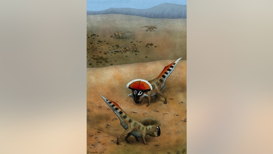 An illustration of two <i>Protoceratops andrewsi</i> signaling to each other, with less mature animals of their kind seen in the background.