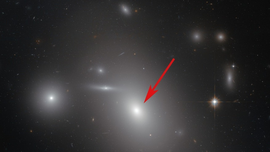 This image taken by the Hubble Space Telescope shows the elliptical galaxy NGC 4889 (arrowed) in front of hundreds of background galaxies. Well-hidden from human eyes, there is a gigantic supermassive black hole at the centre of the galaxy. (Credit:  NASA & ESA)