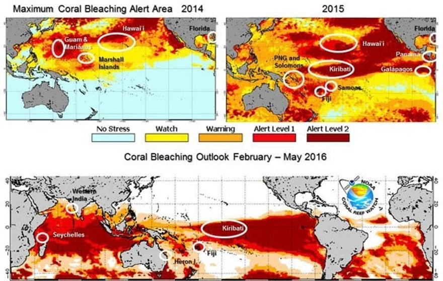 A comparison of coral bleaching in the Pacific from 2014 to 2015 (top) and the current outlook for May 2016 (bottom).