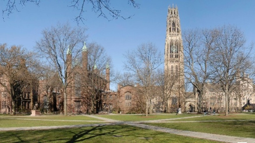 Yale is closing its Climate & Energy Institute.