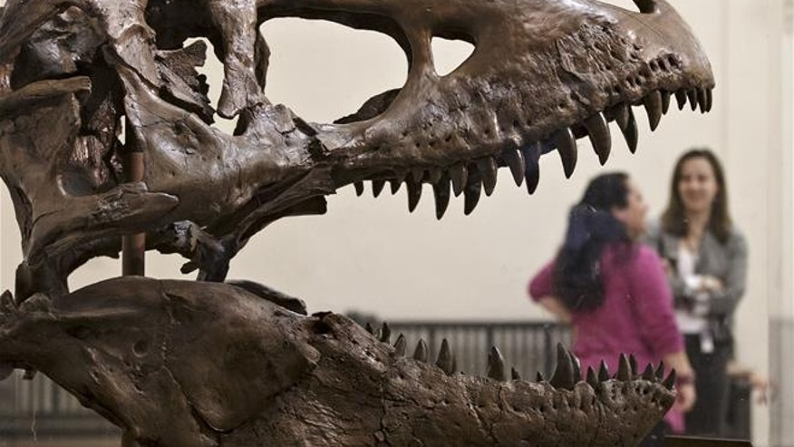"A Canadian paleontologist says the ""ferocious-looking"" teeth of a T. rex were actually covered by scaly lips."