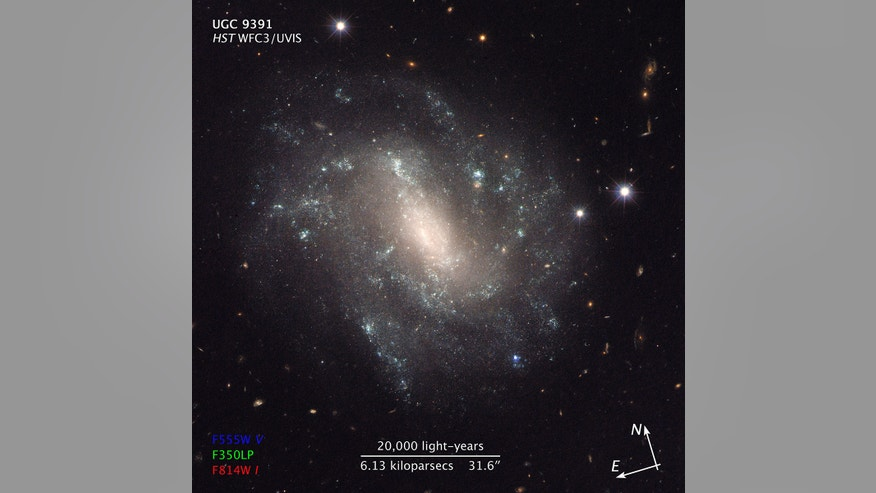 Hubble Space Telescope view of the galaxy UGC 9391, which contains Cepheid variable stars and supernovas that scientists studied to calculate a newly precise value for Hubble's constant.