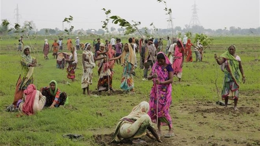 Indian women plant saplings on the outskirts of Allahabad, India, on July 11.