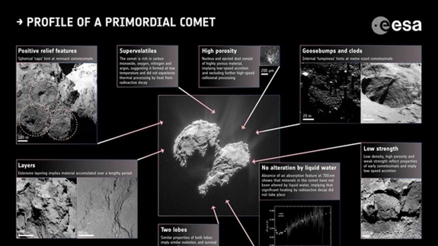 Profile of a primordial comet.