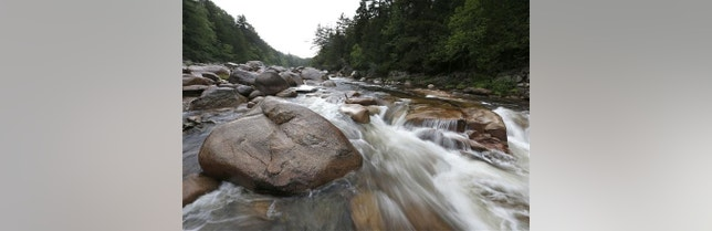 A new study found that Baltimore's streams were contaminated with illegal drugs.